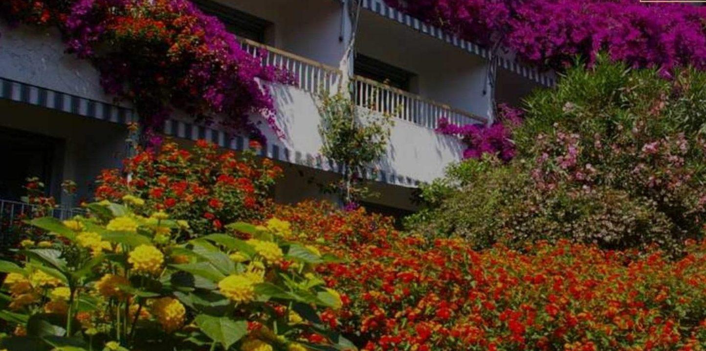 Hotel Pietracap Bastia Corsica Frankrijk façade bougainville