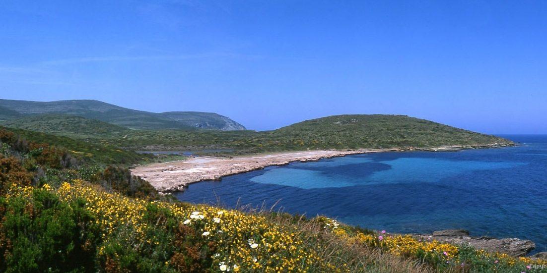 Cap Corse Corsica Frankrijk De Vinger van Corsica strand zee maquis