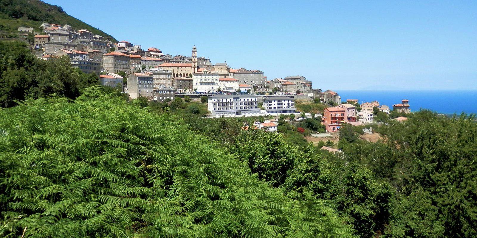 Cervione Corsica Frankrijk heuvel zee varens