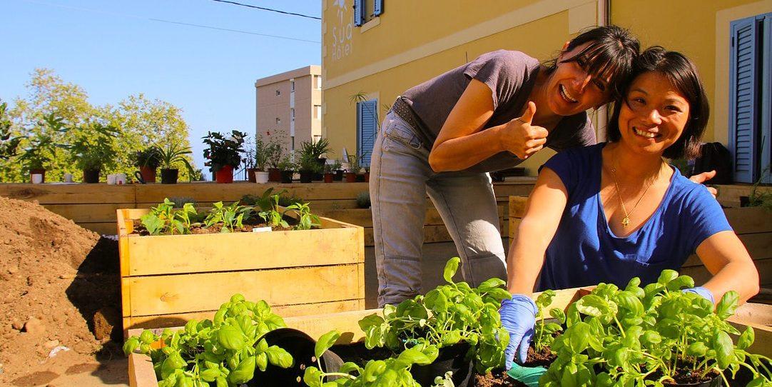 Sud'Hotel Bastia Corsica Frankrijk moestuin potager biologisch