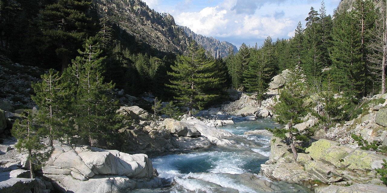 Restonica vallei Corsica Frankrijk rivier rotsen naaldbomen bergen stroomversnelling