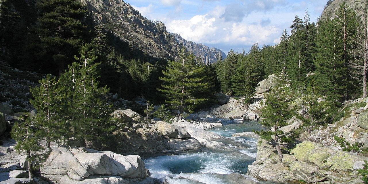 Restonica Corsica Frankrijk vallei rivier naaldbomen outdoor stroomversnelling
