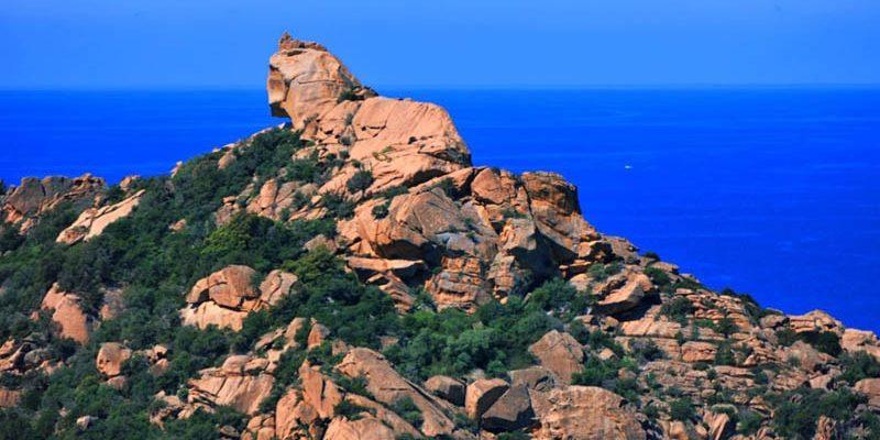 Le Lion de Roccapina Corsica Frankrijk leeuw rotsformatie zee