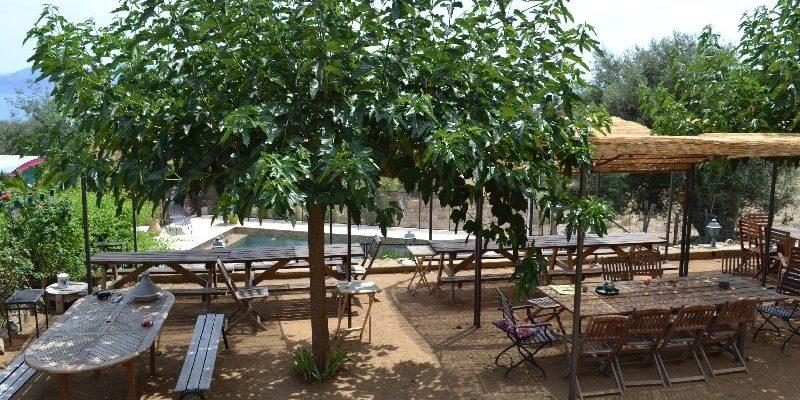 Chambres d'hotes U Cuventu di Paomia Cargese Corsica Frankrijk terras tafels stoelen zwembad
