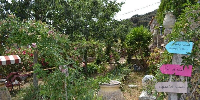 Chambres d'hotes U Cuventu di Paomia Cargese Corsica Frankrijk tuin brocante wegwijzer bomen planten struiken beelden kruiken