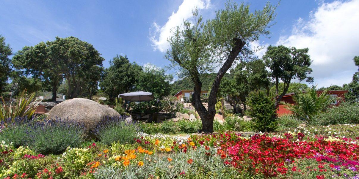 Hotel Le Roc E Fiori Porto-Vecchio Bocca del'Oro Corsica Frankrijk tuin-in-bloei kleurrijk zomer bomen gebouwen