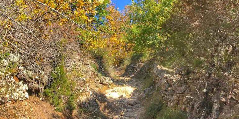 Canal de la Volta Cascade de Ortala Bastelica Corsica Frankrijk irrigatiekanaal waterval kastanjebos wandelen hiken pad