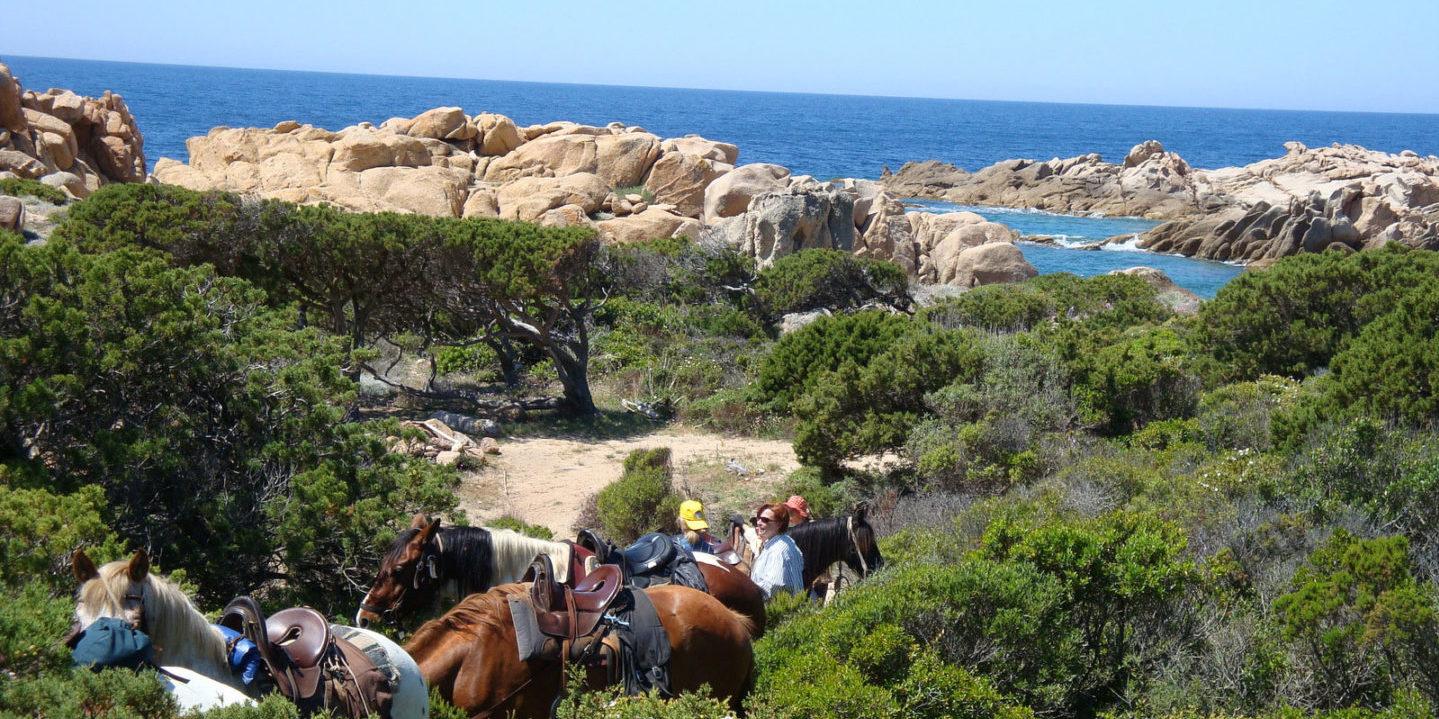 Hotel Perla Rossa Ile Rousse Corsica Frankrijk SkiMaquis OntdekCorsica paardrijden maquis paarden zadels zee rotsen