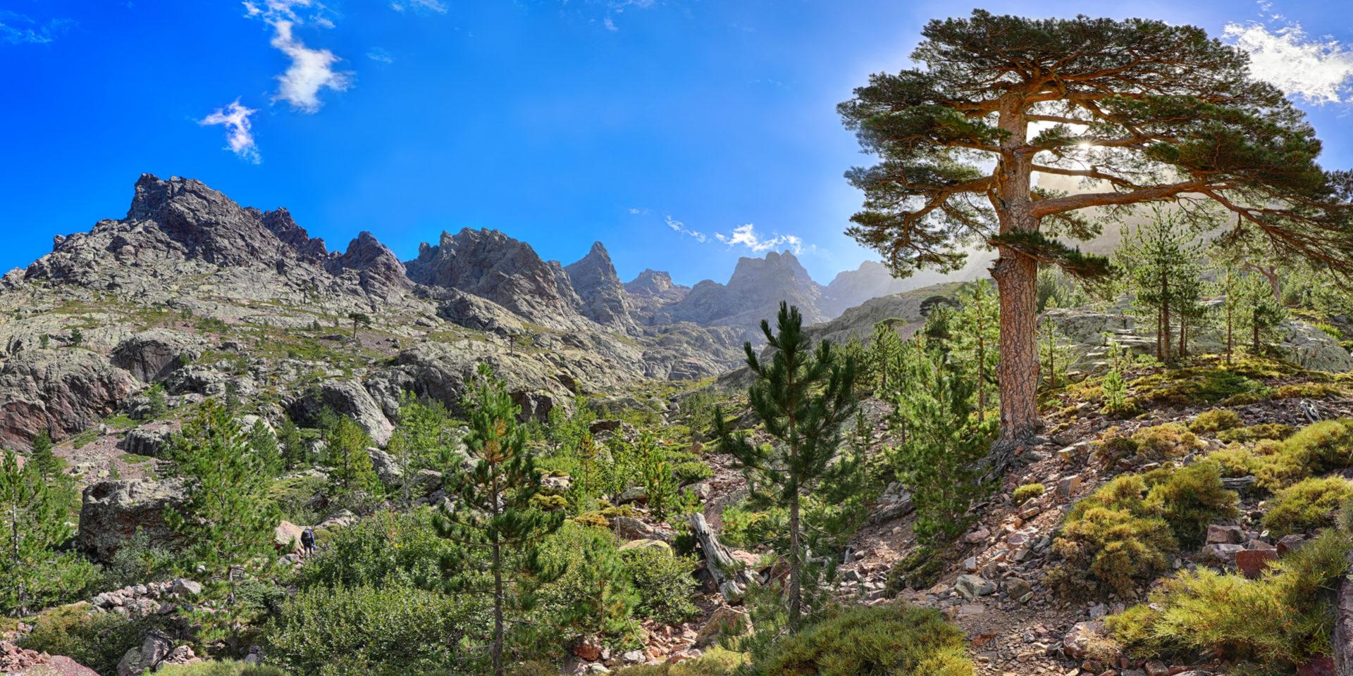GR20 Asco Corsica Frankrijk hiking-trail wandelpad vallei