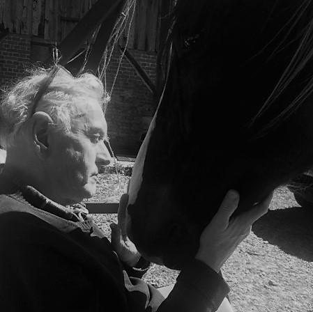 Marcel paard Frankrijk